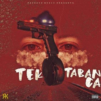 Tek Tabanca Cover